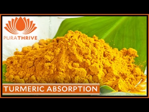 Turmeric Absorption: How to Boost Benefits by 2000% | PuraTHRIVE- Thomas DeLauer