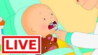 Caillou At the Dentist | Live cartoon | Caillou live | Cartoons for children