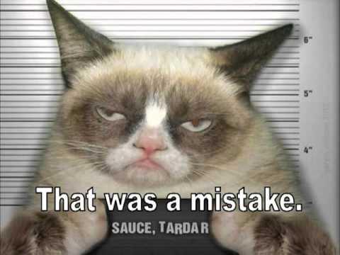 Happy Birthday, Grumpy Cat Style!  LOL!