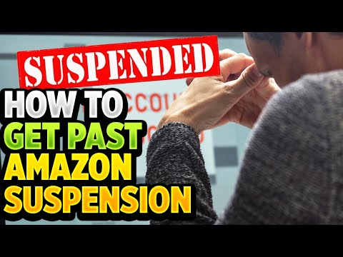 Amazon Review Manipulation Suspension - Plan of Action & Appeal