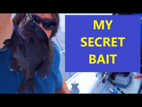 HOW TO CATCH BIG BLUEGILLS AND BREAM FAST AND EASY GUARANTEED TRY MY BREAD TRICK
