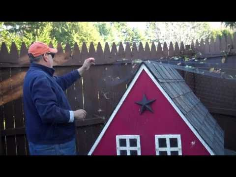 Chicken Update Video #40: Adding a semi permanent roof on the coop area for winter..
