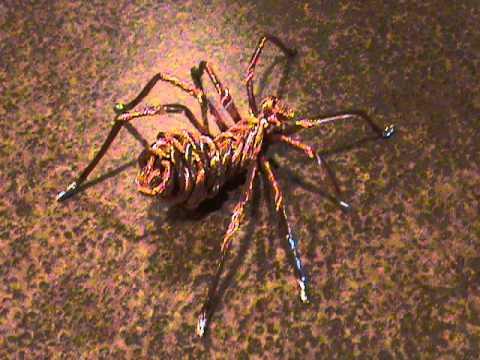 Copper Wire terantula