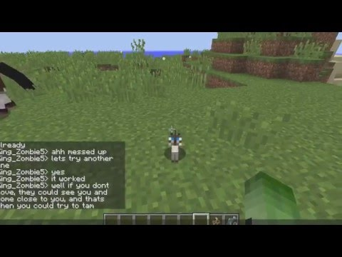 Minecraft Tutorial: How to Tame a Wild Ocelot