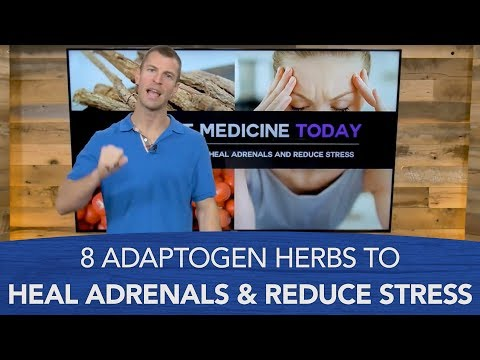 8 Adaptogen Herbs to Heal Adrenals and Reduce Stress