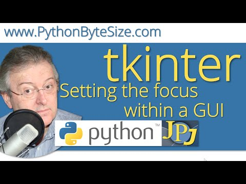 Setting the focus within a Python GUI