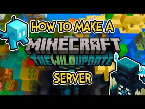 How To Make A Hamachi Minecraft Server For 1.11.2/1.12.1 Fast And Easy!