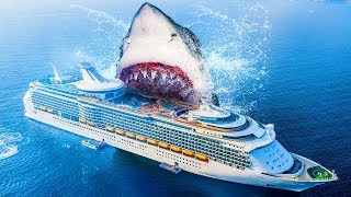 Download 10 Facts About the Biggest Shark Ever Existed Video