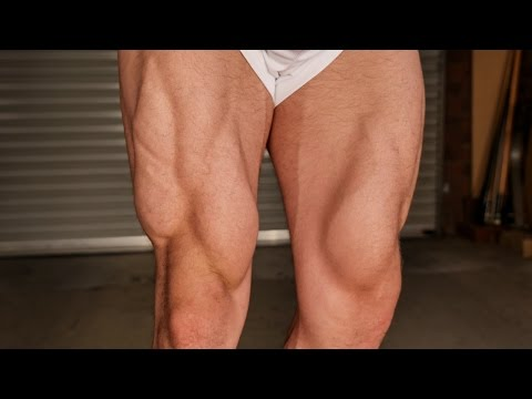 Complete Leg Workout (NO EQUIPMENT)