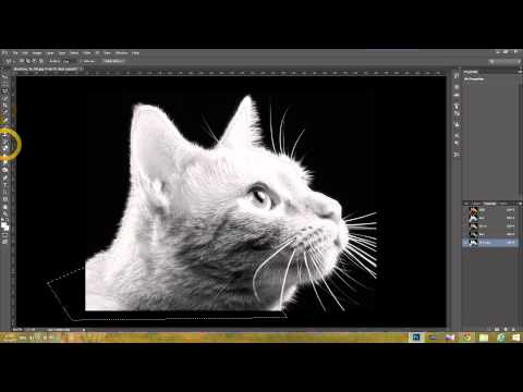 HOW TO USE ALPHA CHANNEL IN PHOTOSHOP CC TUTORIAL