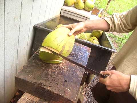 how to cut open a young hawaiian coconut to drink the BEST WATER EVER!!!!