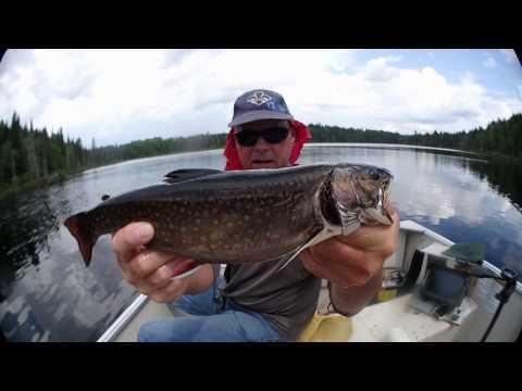 Big Brook Trout Paradise ,Mastigouche reserve / Lac Bleu. 4K