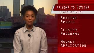 Welcome to Skyline 2017
