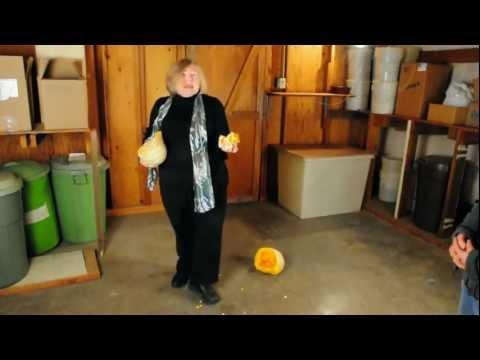 Old Fashioned Squash Drop
