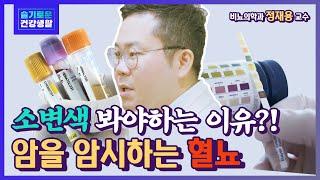 [슬기로운 건강생활] 소변 색깔이 빨간색? 비뇨기계암의 가장 흔한 증상 혈뇨! - 비뇨의학과 정재용 교수