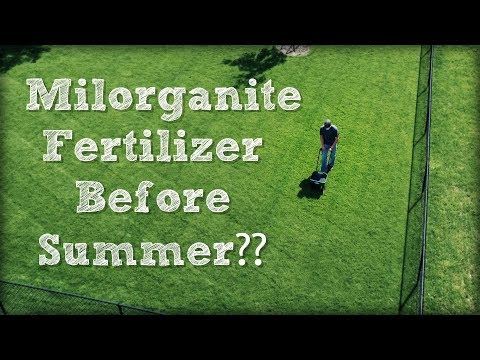 Why I Apply Milorganite Fertilizer Before Summer