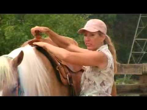 Western Saddle Fit - Great information!!!