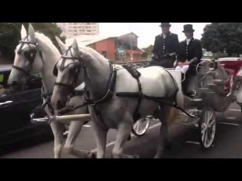 Horses & Carriage in Birmingham UK