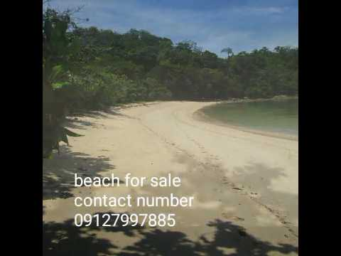 Beach for sale in linapacan,palawan