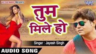Latest Hindi Song - Tum Mile Ho - Dil Laga Liya - Jayesh Singh - Hindi Hit Song 2017