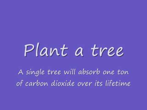 Ways to reduce global warming!