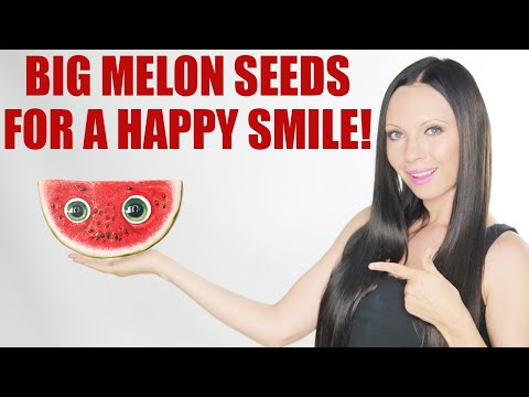 Health Benefits Of Watermelon Seeds | BoldSky