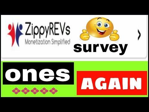 ZippyREVs Survey Ones Again 2017 [HINDI]