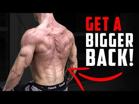 Quick Workout for a Bigger Back (BANDS ONLY!)