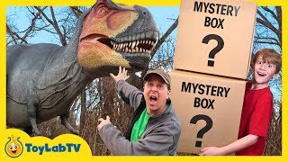 Download Dinosaur Mystery Box Challenge! Giant Life Size Dinosaurs for Kids & Playground Adventure with Toys Video