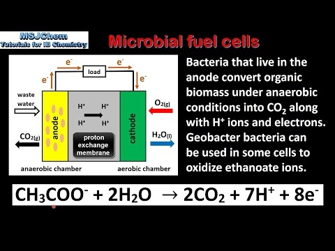 C.6 Microbial fuel cells (HL)