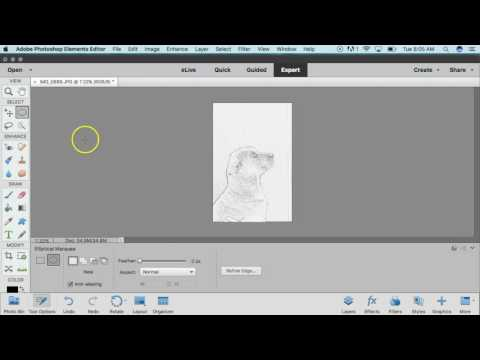 Make Custom Pumpkin Carving Templates in Photoshop Elements 15