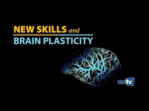 New Skills and Brain Plasticity
