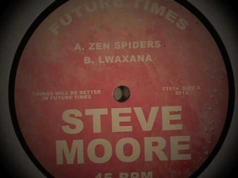 Steve MOORE - Zen Spiders