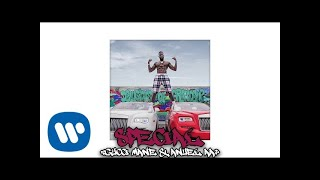 Gucci Mane & Anuel AA - Special (Official Audio)