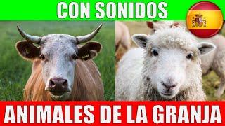 ANIMALES DE LA GRANJA para Niños - Sonidos y Nombres en Español