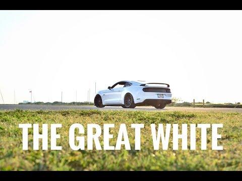 500HP CROWD KILLER MUSTANG GT REVIEW!!