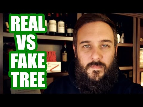 Real vs Fake Christmas Tree, Thoughts On Snapchat Spectacles, and PewDiePie Birdabo Ending