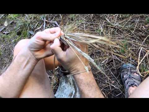 How to make grass coiled basket / Jak vyrobit ošatku z trávy, English subtitles