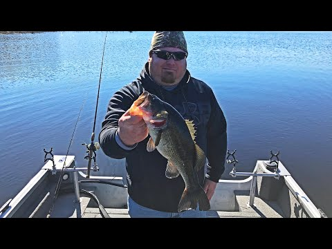 Early Spring Fishing ICE OUT (Big Bass & Giant Bluegill)