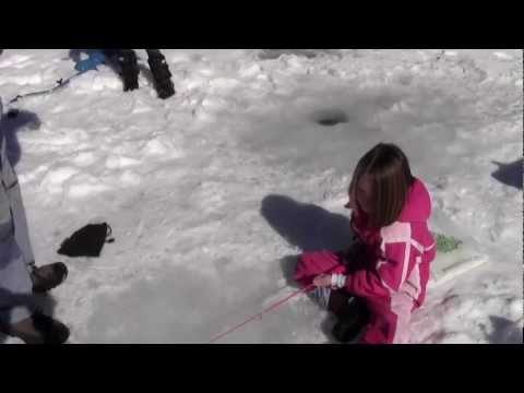 Ice Fishing for Monster Tiger and Brook Trout. How to Poach a Trout. How to Fillet a Trout.