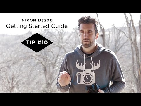 Nikon D3200 Guide - Tip #10 - Zoom In to Check Image Sharpness