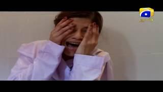 Saaya - Episode 53 Best Scenes | Har Pal Geo