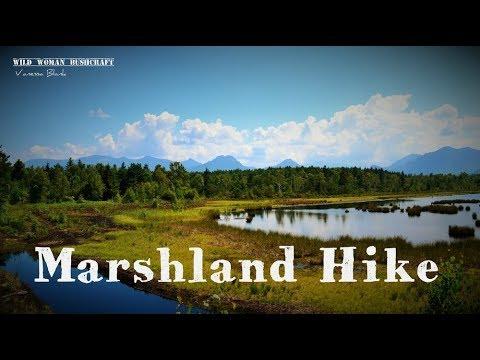 Marshland Hike- Wild Woman Bushcraft - Vanessa Blank