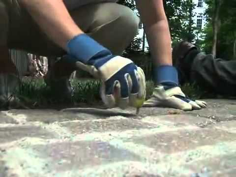 Polymeric Sand   Prevent Weed Growth By Sakrete