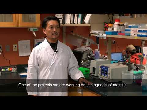 Versatile Early Detection Technology Developed by UTIA & UTK Researchers