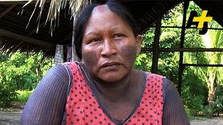 How A Dam Is Destroying Rainforest And Displacing Thousands In Brazil