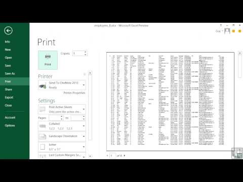 Microsoft Excel 2013 Tutorial | Paper Size, Orientation, Margins, And Scaling Options