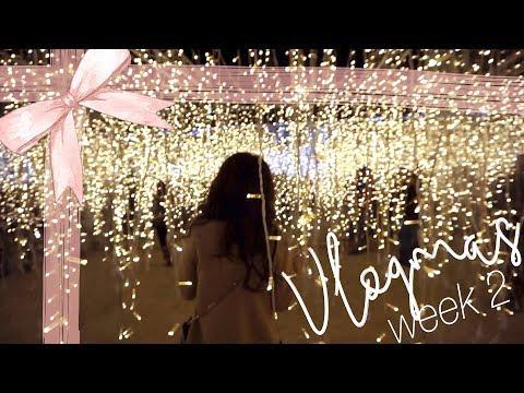 Target Drama & Holiday Light Maze! Vlogmas Week 2