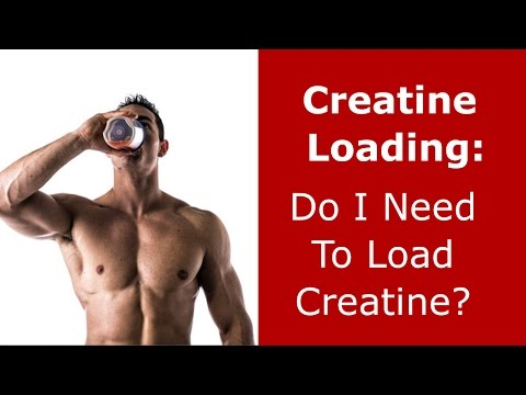 Creatine Loading: Do You Need to Load Creatine?