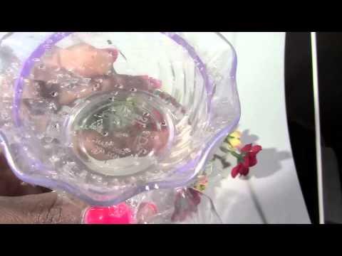 How to Get Rid of Fruit Flies & Gnats Using Vinegar